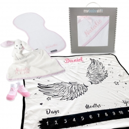 Fly away milestone hamper